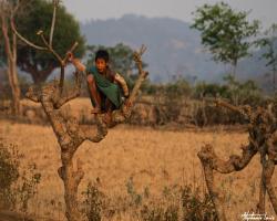 Birmanie155