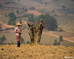 Birmanie190
