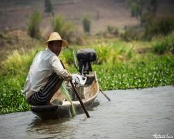 Birmanie201