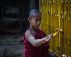 Birmanie226