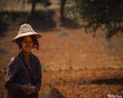 Birmanie62