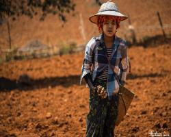 Birmanie75