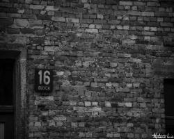 Cracovie14