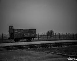 Cracovie25