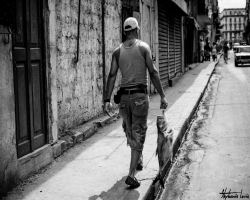 Cuba 2015 103