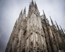 Milan41