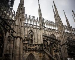Milan67