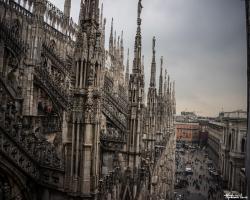 Milan79