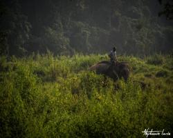 Nepal 2014 073