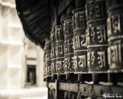 Nepal 201423