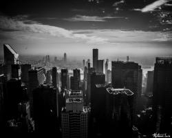 New York53