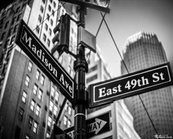 New York97