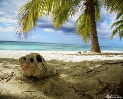 Punta Cana02