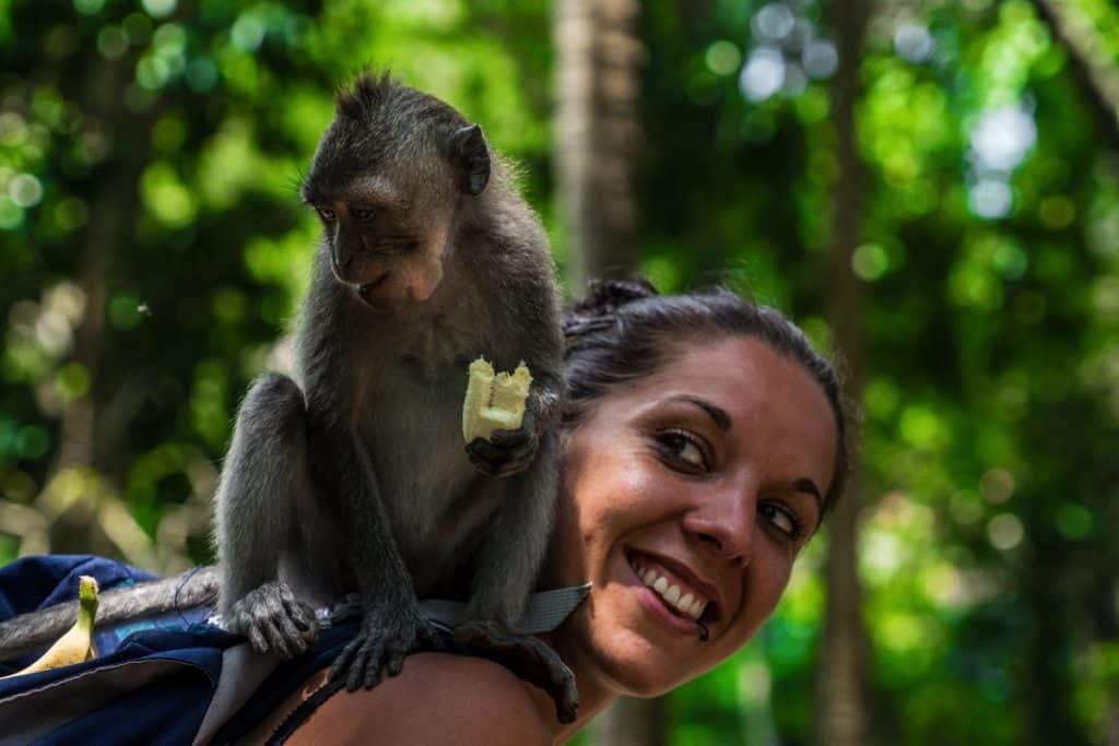 monkey forest a ubud bali
