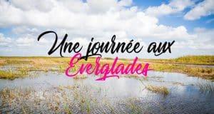 Everglades3