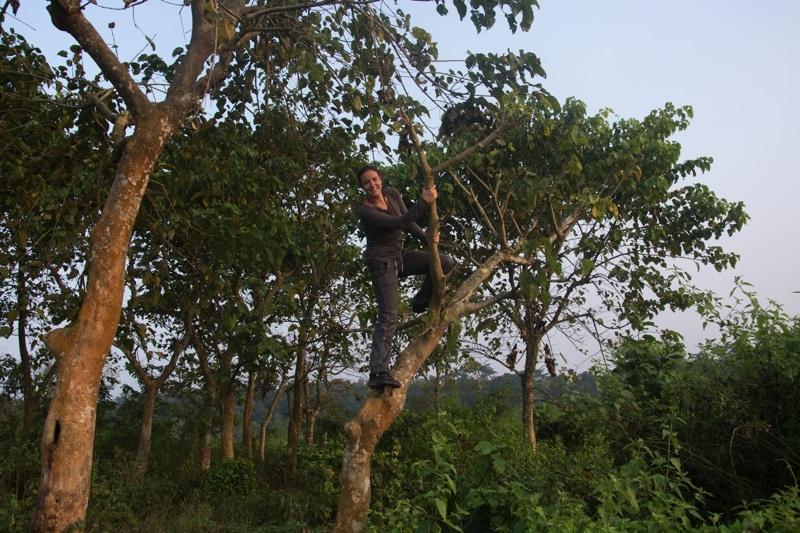 parc naturel de chitwan au nepal