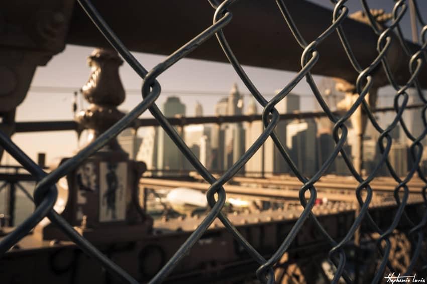 New York25
