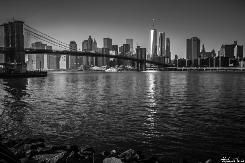New York33