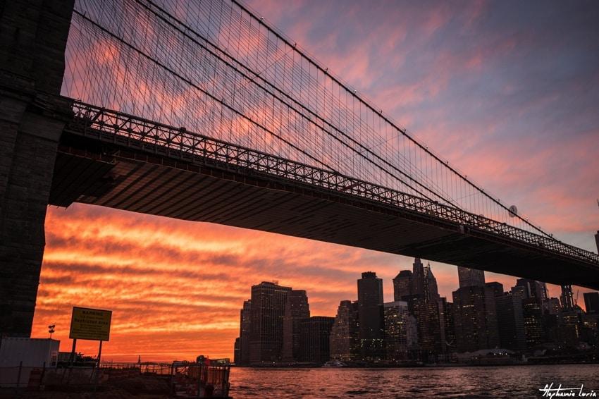 New York37